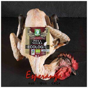 Pollo ecológico POTA NEGRA